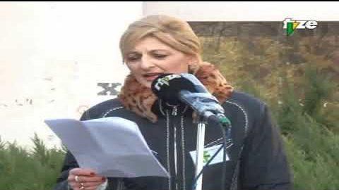 """Protestni skup """"A da ih tužimo?"""" (TV Zenica 2014)"""